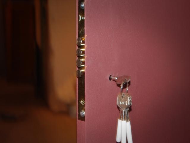 Metalinės sandėliuko durys